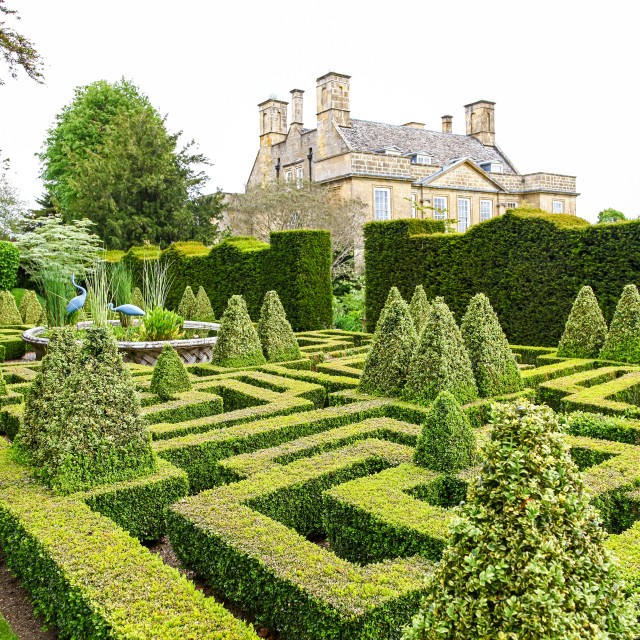 """The Knot Garden at Bourton House, Bourton on the Hill, Gloucestershire, England, UK"" stock image"