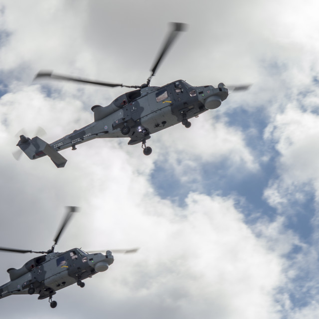 """Royal Navy Choppers"" stock image"