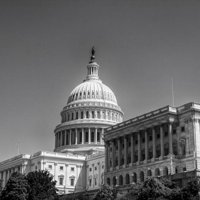 """Capitol in Washington DC"" stock image"