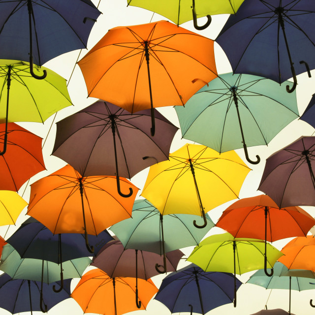 """Many of the larger size hanging umbrellas."" stock image"