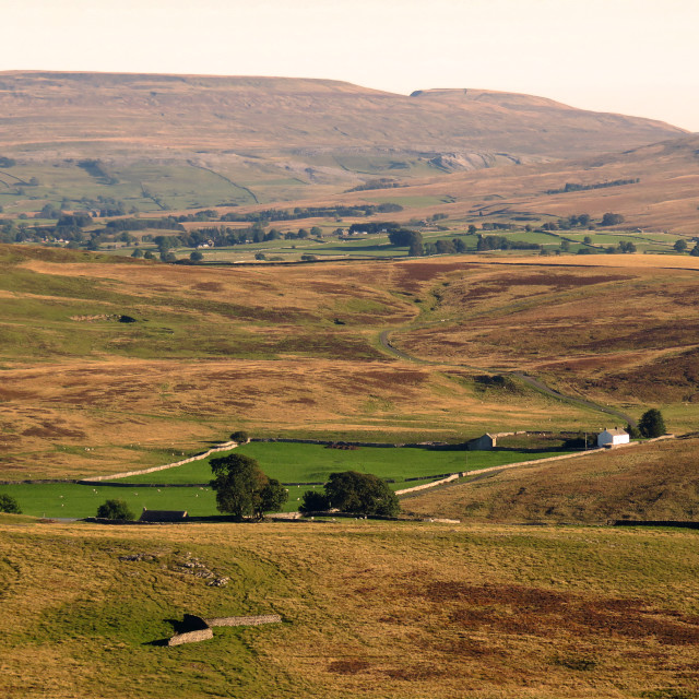 """""""Little Asby Common looking towards Wild Boar Fell"""" stock image"""
