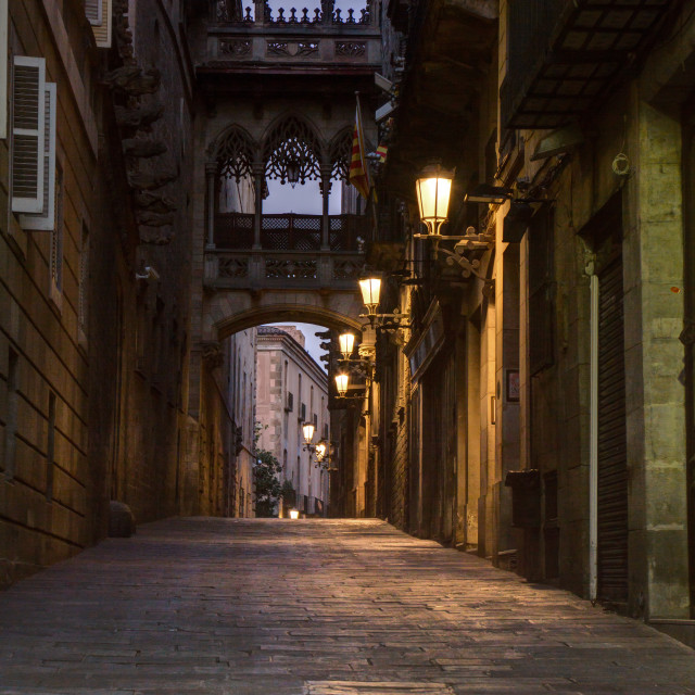 """Carrer del Bisbe, Barcelona"" stock image"