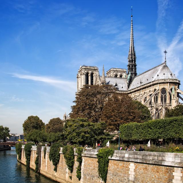 """""""Notre Dame - Paris"""" stock image"""