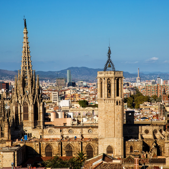 """""""Barcelona cathedral"""" stock image"""