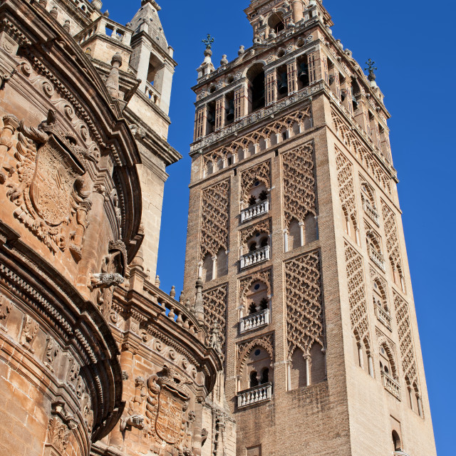 """""""Tower of the Seville Cathedral"""" stock image"""