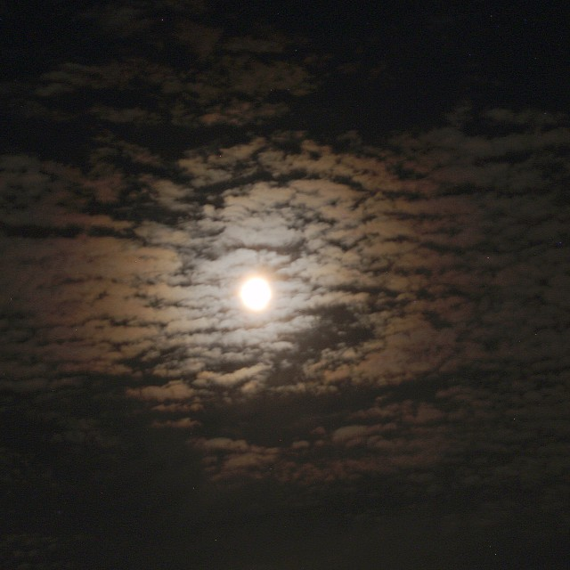 """Harvest Moon over estuary"" stock image"