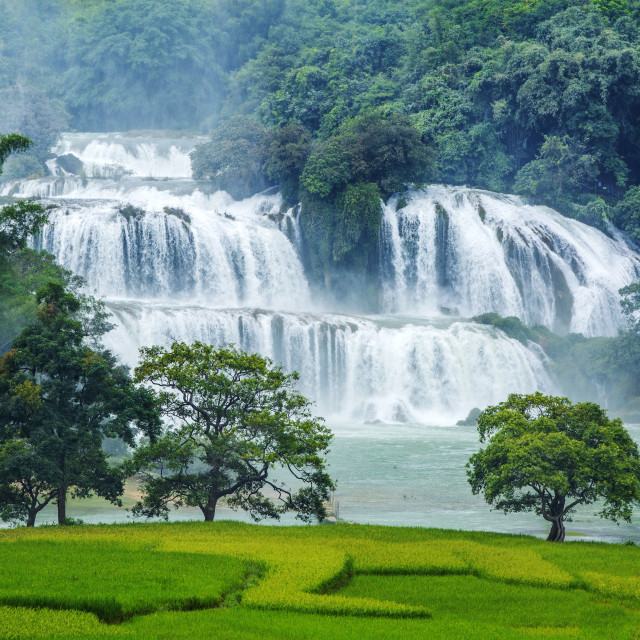 """Ban Gioc waterfall"" stock image"
