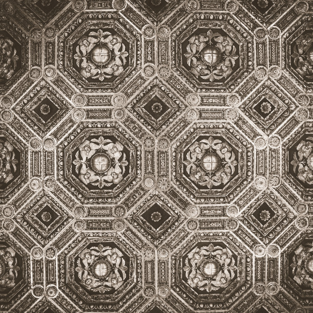 """Ceiling in Palazzo Vecchio in Florence"" stock image"