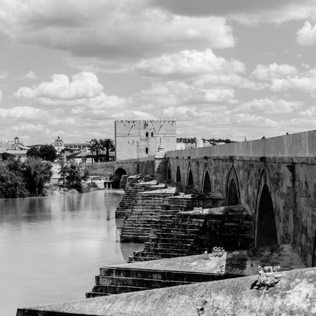 """Cordoba - The Roman bridge BW"" stock image"