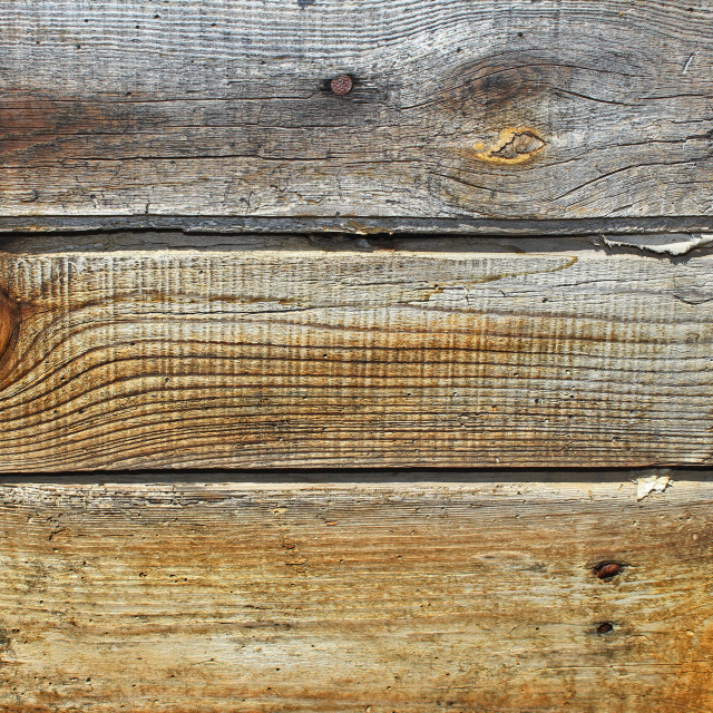 """Planks texture"" stock image"