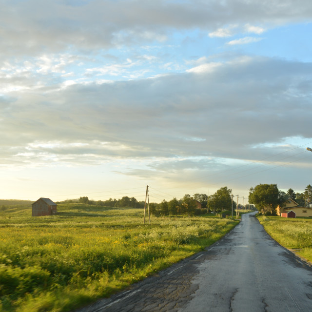 """""""Road through green landscape"""" stock image"""