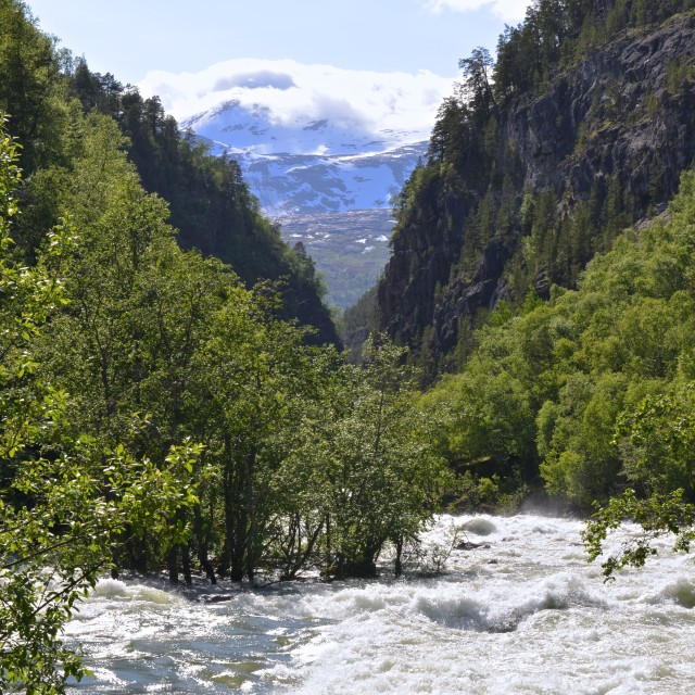 """""""wild river in Norway"""" stock image"""