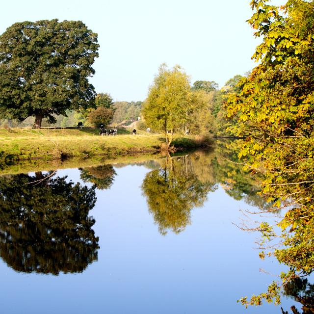 """""""River scene"""" stock image"""