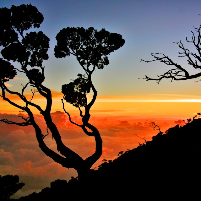 """Sunset at Laban Rata, Mt Kinabalu"" stock image"