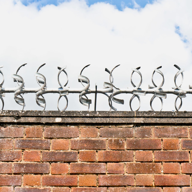 """""""Barbed wire"""" stock image"""