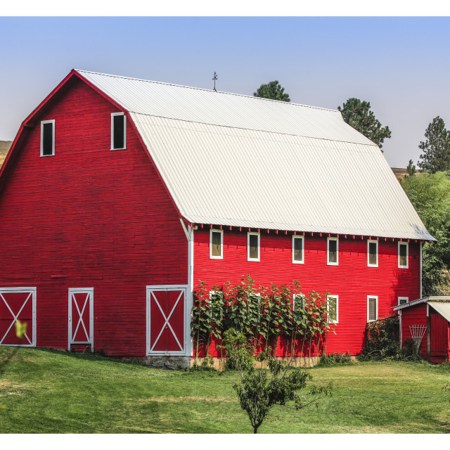 """Red Barn in the Palouse"" stock image"