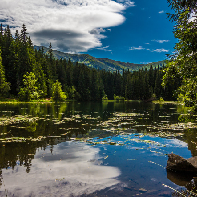 """Vrbicke tarn reflection"" stock image"