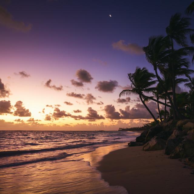 """Caribbean wild beach, Punta Cana"" stock image"