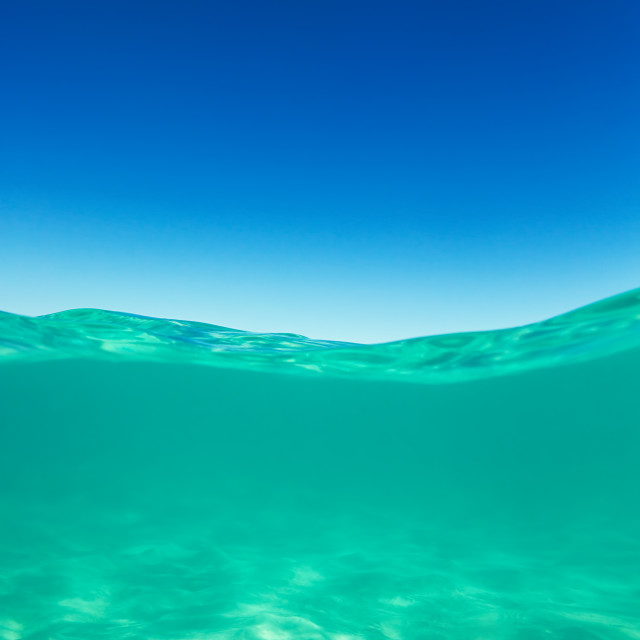 """""""Clear waterline caribbean sea underwater and over with blue sky"""" stock image"""