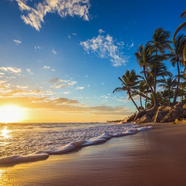 """""""Landscape of paradise tropical island beach, sunrise shot"""" stock image"""