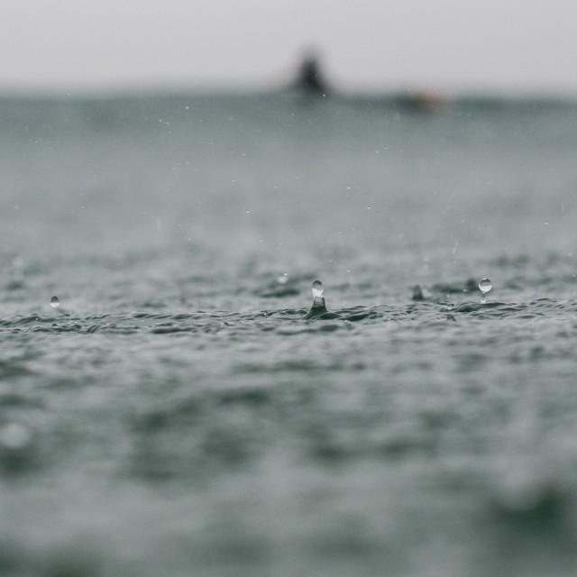 """Rain drop"" stock image"