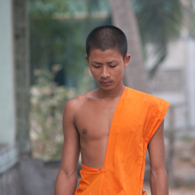 """Asian young monks walking morning alms"" stock image"