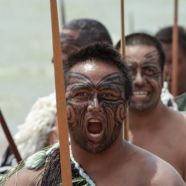 """Fierce Maori warrior"" stock image"
