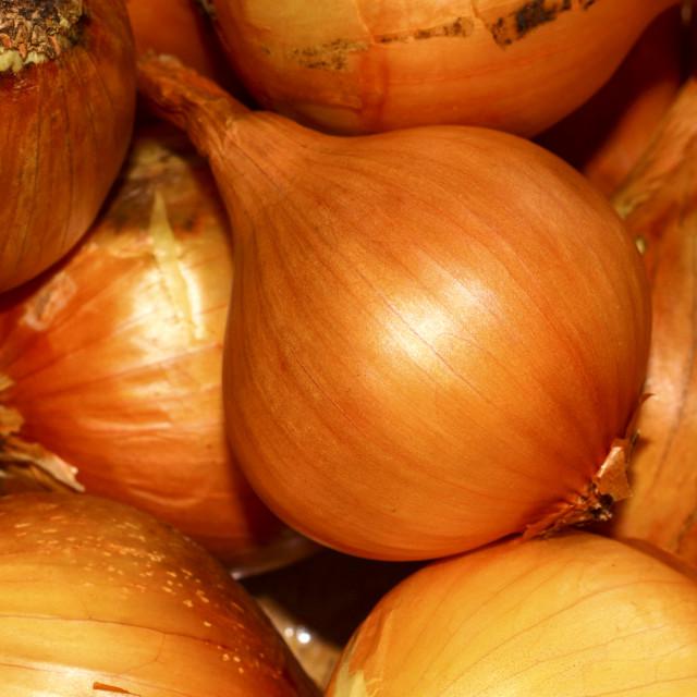 """Heap of onions"" stock image"