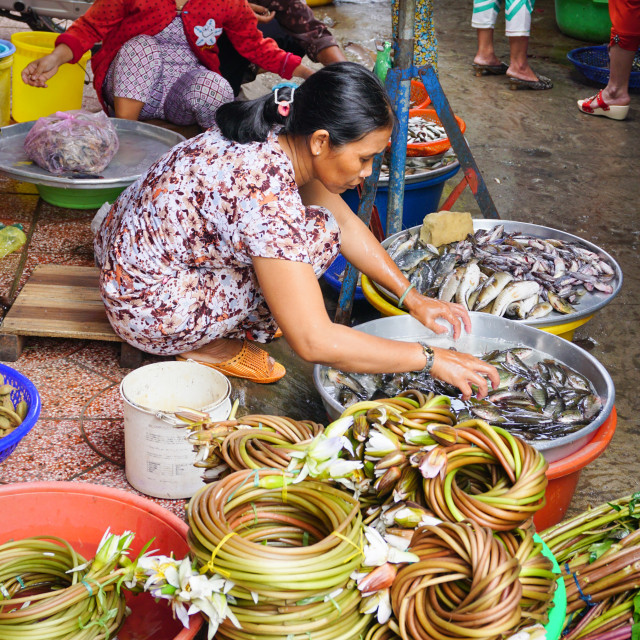 """""""Asian women selling fresh fishes"""" stock image"""