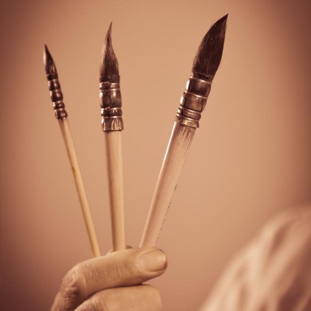 """Painter's hand holding three paintbrushes"" stock image"
