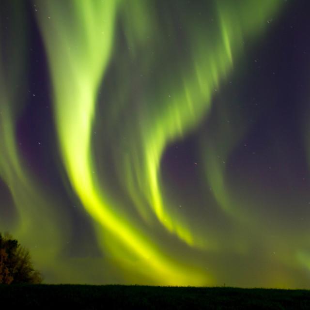 """aurora borealis in sverige"" stock image"