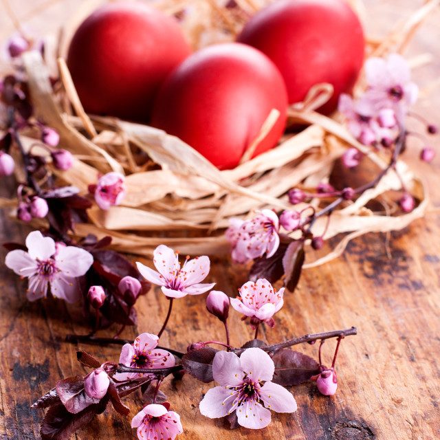 """Flowers with easter eggs in a nest"" stock image"