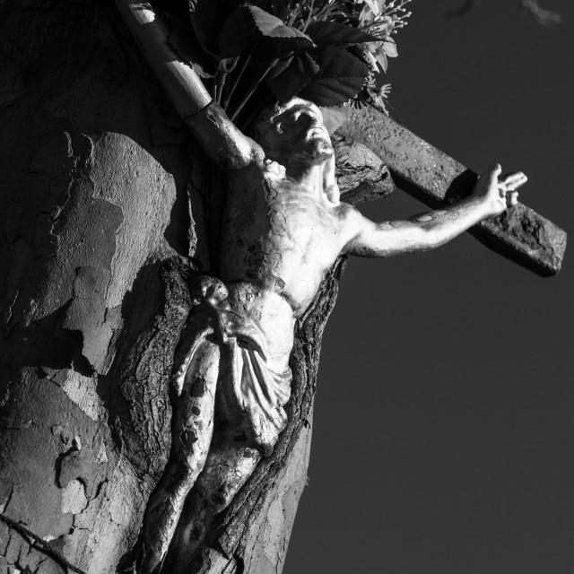 """""""Cristo dimenticato"""" stock image"""