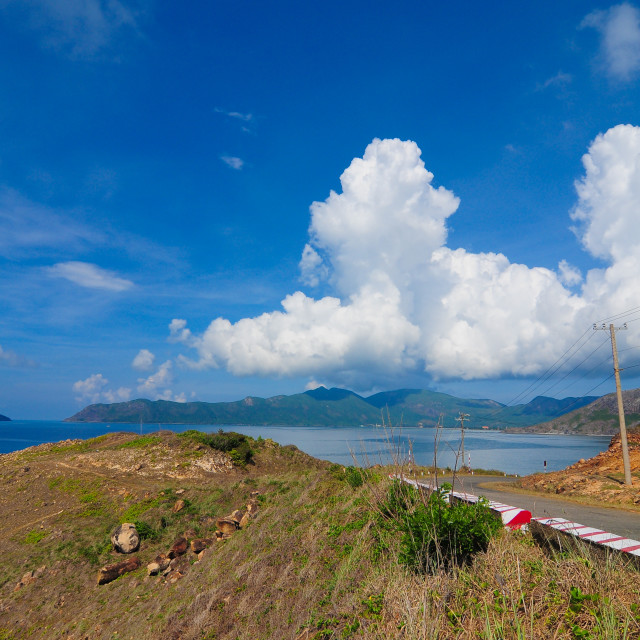 """Road to the mountain in Con Dao island"" stock image"