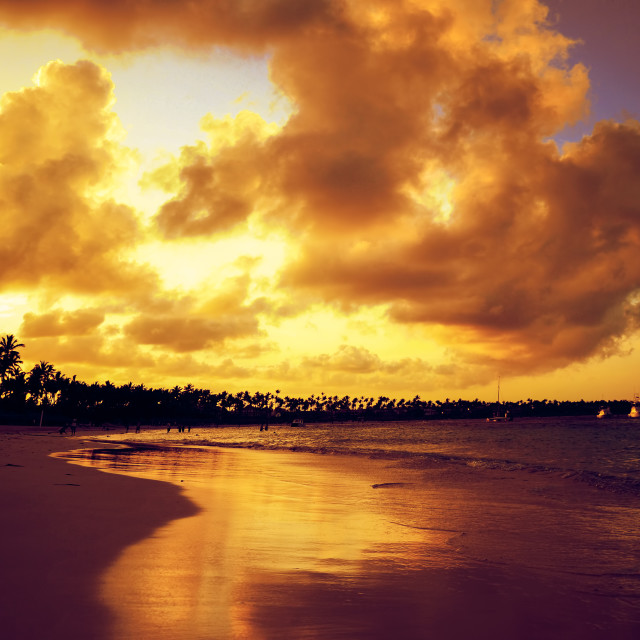 """""""Sunset over exotic beach in Punta Cana"""" stock image"""