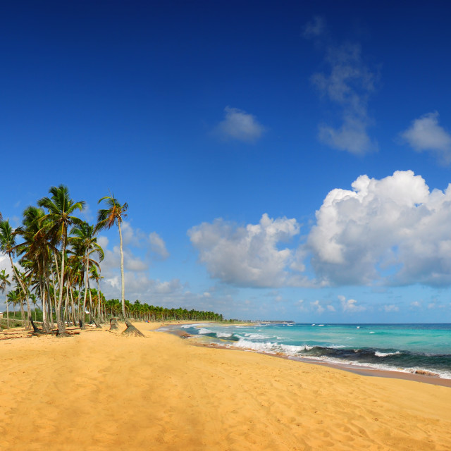 """Tropical exotic beach, Punta cana"" stock image"