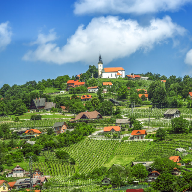 """""""Panoramic view at beautiful village in Slovenia"""" stock image"""