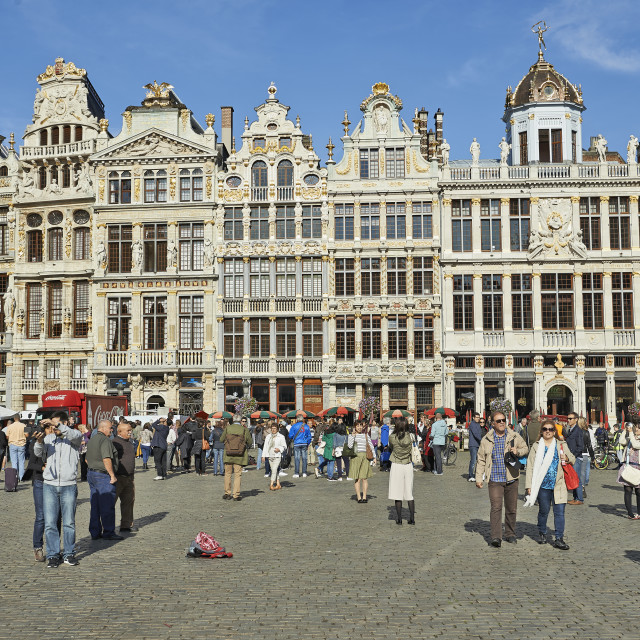 """Renovation of the facades of the Grand Place, Brussels"" stock image"