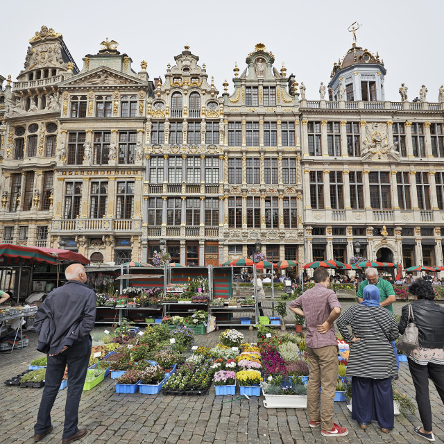 """""""Flowers market at the Grand Place In Brussels, Belgium"""" stock image"""