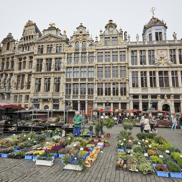 """Flowers market at the Grand Place In Brussels, Belgium"" stock image"