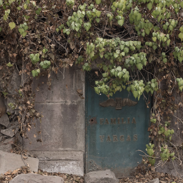 """""""Overgrown tomb, National Cemetery, Santiago, Chile"""" stock image"""