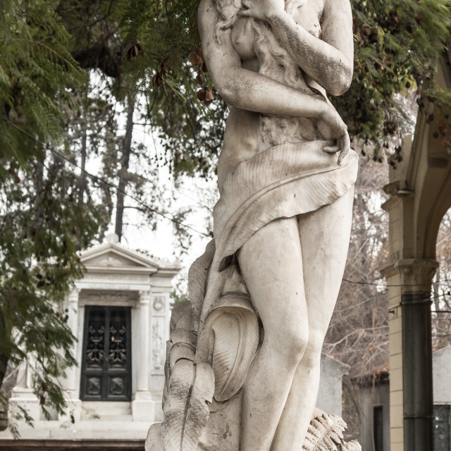 """""""Female statue, National Cemetery, Santiago, Chile"""" stock image"""