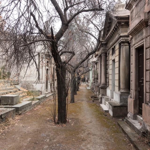 """National Cemetery (Cementerio General de Santiago), Santiago, Chile"" stock image"