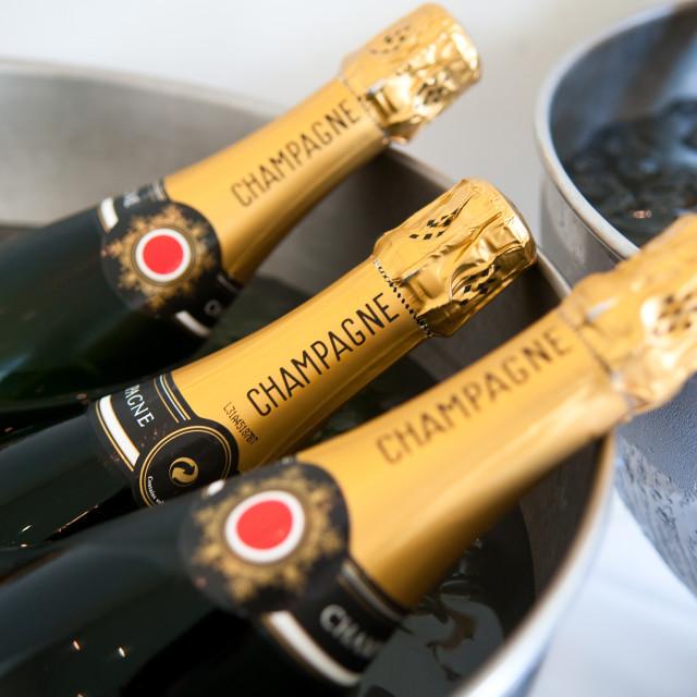 """Champagne Bottles"" stock image"
