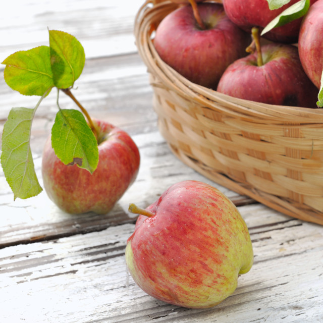 """fresh apples"" stock image"