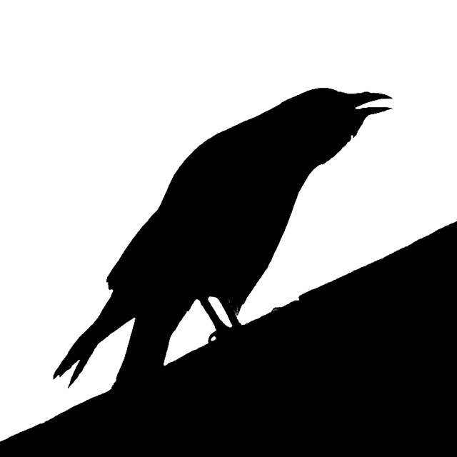 """Carrion Silhouette"" stock image"