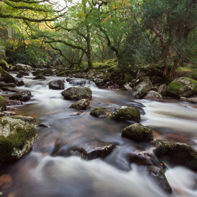 """Dartmoor Stream"" stock image"