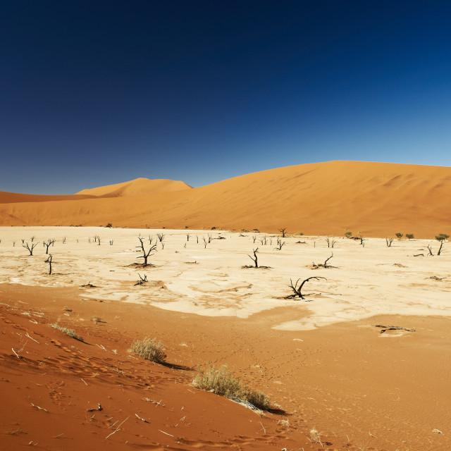 """""""Deadvlei, desert landscape of Namib at Sossusvlei"""" stock image"""