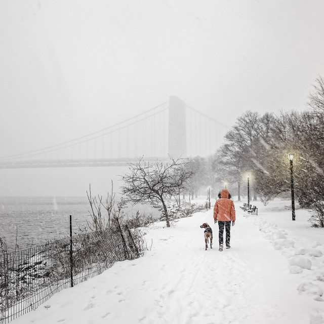"""Harsh Conditions in New York City"" stock image"