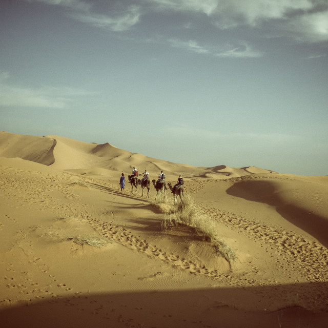 """Trek through the Sahara desert"" stock image"